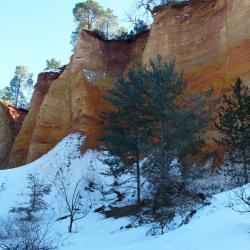 2015-2-10 4 Colorado Provencal