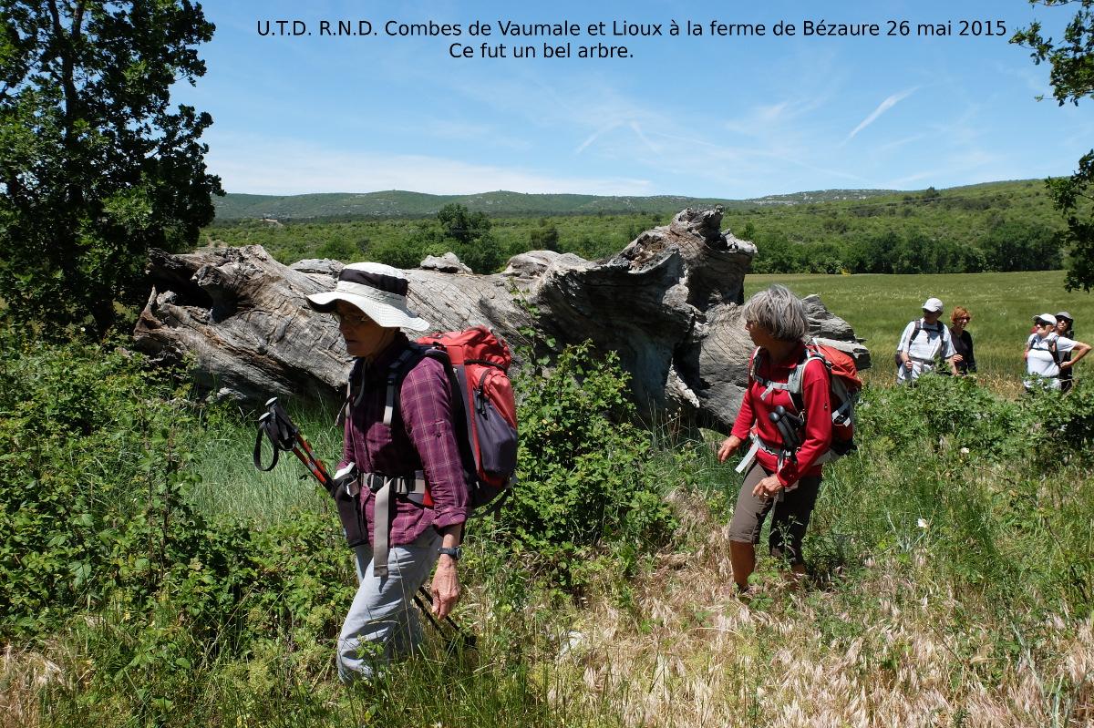 Sortie  Combes de  Vaumale  et de Lioux 3