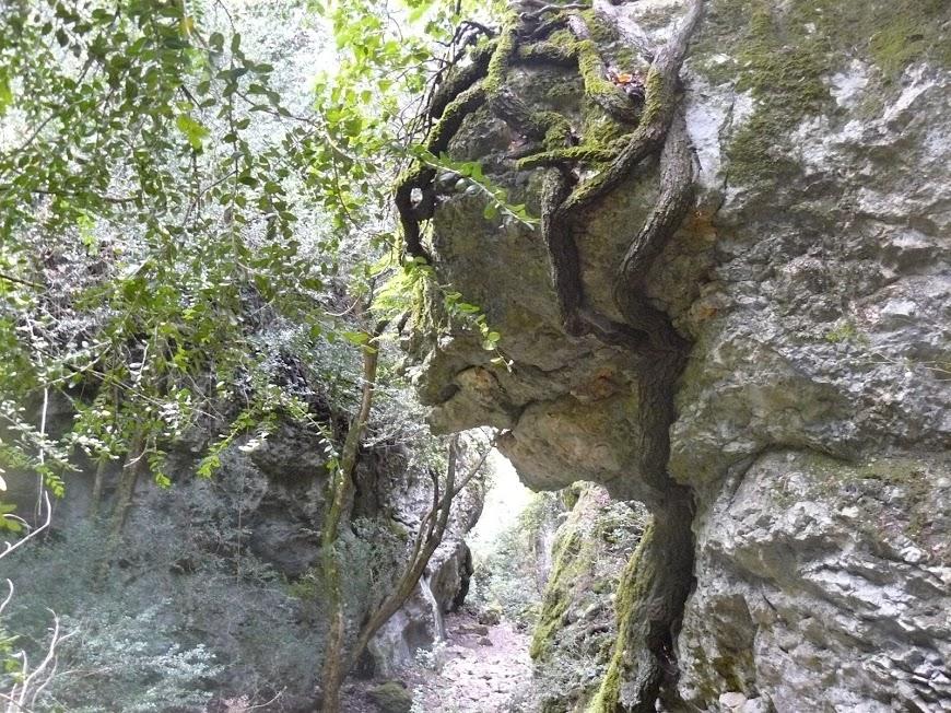 Luberon :Font de l'Orme- Bastidon du Pradon l