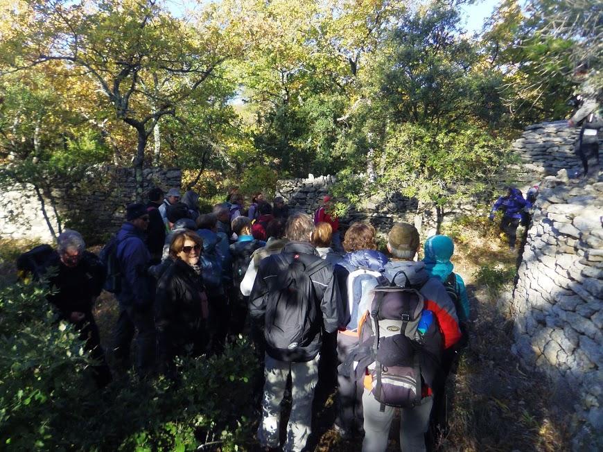 Luberon :St Pantaleon
