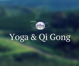 Yoga et qi gong utd salon de provence