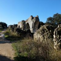 2014-02-11 Fontvieille Aqueduc de Barbegal