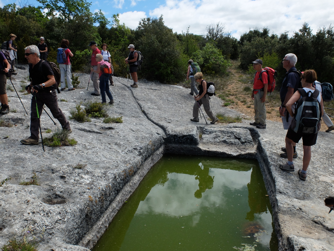 2014-05-27 Les Aiguiers de Villars Jas du Pin