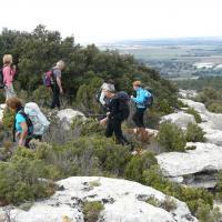 Les Alpilles   Au Mont Valence 9