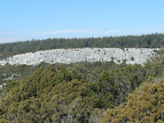 Le luberon -Cedres 10 Falaise de la Roque des Bancs