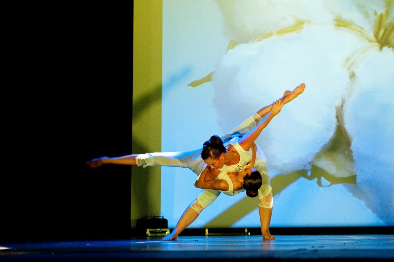Figure de Danse creation