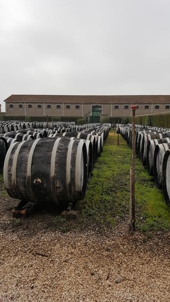Domaine viticole de NOILLY PRAT 1