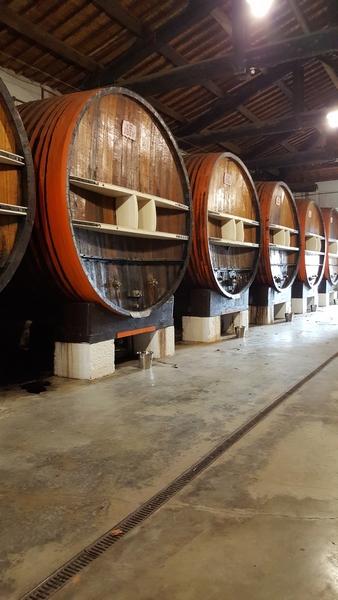 Domaine viticole de NOILLY PRAT  2
