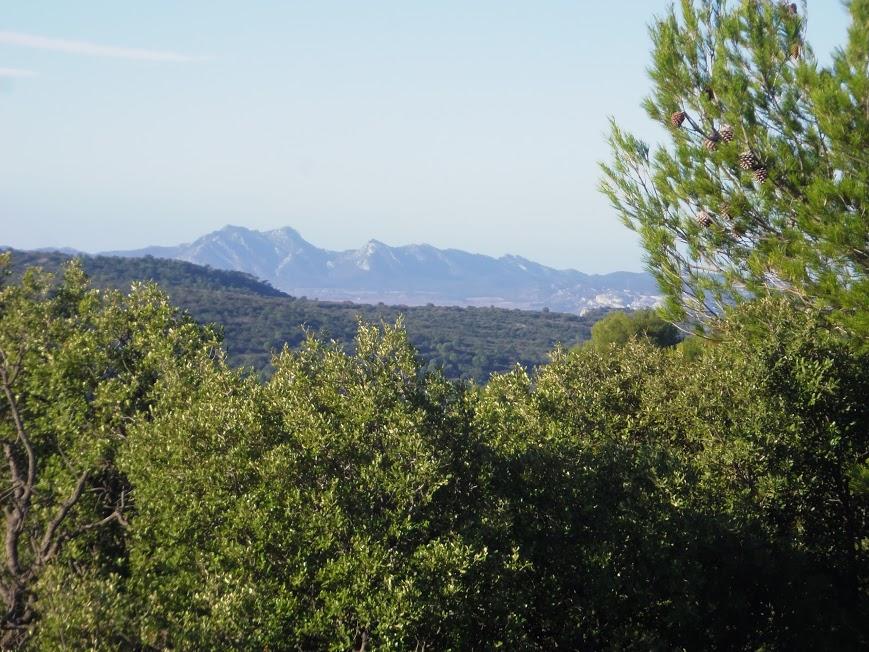 Luberon 3 avec  les Alpilles au fond
