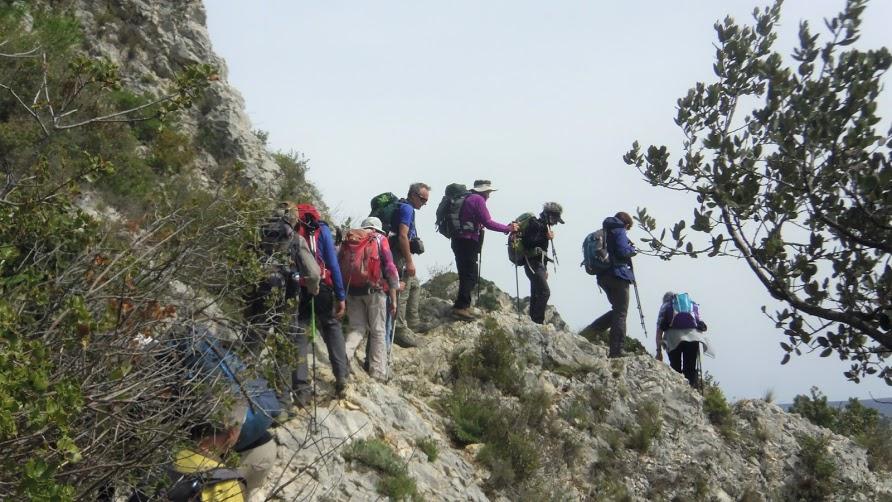 St Remy- 8 Crete Alpilles