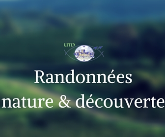 Randonnees nature et decouverte utd salon de provence